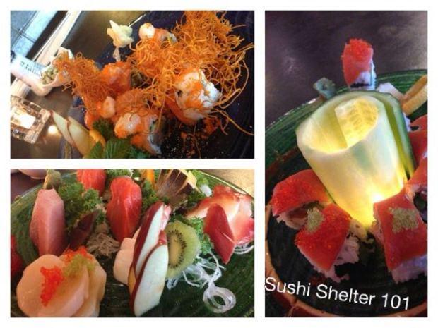 sushi shelter 1